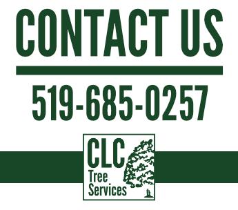 CLC Phone Number - 5196850257